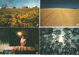"""Lots De Cartes """"Prestige""""5 Régions (Gascogne,Puy -de-Dome,Annecy,Tarn,,Côte Languedocienne - Altri Fotografi"""