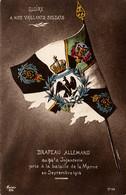Drapeau Pris Aux Allemands.94e D'infanterie - War 1914-18