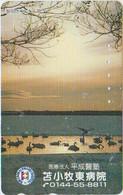 BIRDS - JAPAN - V816 - Other