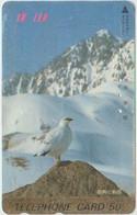 BIRDS - JAPAN - V836 - Altri