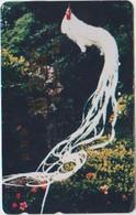 BIRDS - JAPAN - V843 - Altri