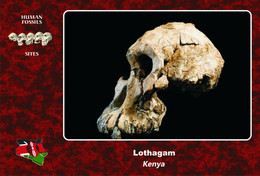 Set 4 Cartes Postales, Hommes Prehistoriques, Human Fossil Sites, Lothagam (Kenya), Australopithecus Anamensis - History