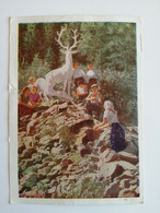 1964..USSR.. VINTAGE   POSTCARD..''DEER'' SPRING IN THE FOOTHILLS OF THE  ZAILIYSKY ALATAU - Fotografie