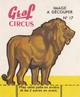 IMAGE  --  CIRQUE  --  GRAF  CIRCUS  --  N°  17 - Circo