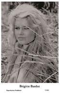 BRIGITTE BARDOT - Film Star Pin Up PHOTO POSTCARD - 72/803 Swiftsure Postcard Year 2000 - Unclassified