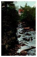 New York  Stream In  Hague On Lake George - Adirondack