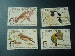 SIERRA LEONE   MNH  STAMPS BIRDS BIRD  SET 1985  AUDUBON - Non Classés