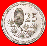 • CEDAR Of LEBANON: CYPRUS ★ 25 MILS 1977! LOW START ★ NO RESERVE! - Cyprus