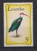 Lesotho - 1971 - N°Yv. 208 - Oiseaux / Birds - Neuf Luxe ** / MNH / Postfrisch - Non Classificati