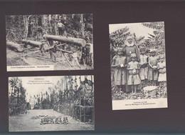 Océanie / Lot De 3 CPA / Nouvelle Guinée, Scieurs De Long, Cueillette Café, Village Décoré - Papua New Guinea
