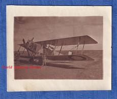 Photo Ancienne - Aérodrome à Situer - Portrait D' Aviateur & Son BIPLAN - Modele D'avion à Identifier WW1 1917 Aviation - Aviación