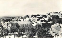 """CPSM ALGERIE """"Tiaret"""" - Altre Città"""