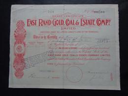 AFRIQUE DU SUD - JOANNESBURG, TRANSVAL 1912 - EAST RAND GOLD, COAL & ESTATE CIE - 2 ACTIONS DE 2 SHILLIGNS & 6 PENCES - Unclassified