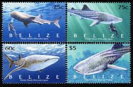 Belize - 2004 - Whale Shark - Mint Stamp Set - Belize (1973-...)