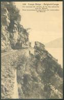 Mint Postal Stationery 30c. PALMIER Vue 104 Un Tournant Du Chemin De Fer Des Cataractes Près De Matadi -17985 - Ganzsachen