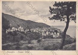 CARTOLINA  LE CINQUE TERRE,LA SPEZIA,LIGURIA,CORNIGLIA,LUNGOMARE,SPIAGGIA,ESTATE,SOLE,MARE,BAGNI,VIAGGIATA 1952 - La Spezia