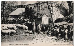 Belgique - Lavage De Moutons - Other