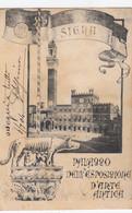 SIENA-PALAZZO DELL'ESPOSIZIONE D'ARTE ANTICA-BELLA  CARTOLINA VIAGGIATA IL 6-7-19074 - Siena