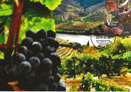 CARTE MAXIMUM - MAXICARD - CARTOLINA MAXIMA - MAXIMUM CARD - PORTUGAL - VIGNES - RAISINS- LA RÉGION DÉLIMITÉE DU DOURO - Agriculture