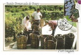 CARTE MAXIMUM - MAXICARD - MAXIMUM KARTE - MAXIMUM CARD - PORTUGAL - DOURO - TRANSPORTER LES RAISINS EN BASSIN - Agriculture
