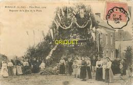 44 Riaillé, Fête Dieu 1904, Reposoir De La Rue De La Poste, Affranchie 1904 - Sonstige Gemeinden