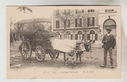 CPA AGRICULTURE ATTELAGE - Attelage BEARNAIS à PAU Devant Café Du Cirque (Pyrénées Atlantiques) - Equipaggiamenti