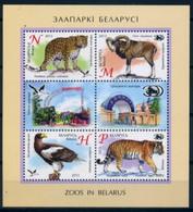 Belarus 2013 Bielorrusia / Animals Birds Big Cats MNH Fauna Aves Felinos Vögel Säugetierer / Hy17  30-46 - Raubkatzen