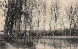 92  MEUDON   CPA   Bois De Meudon - L'Etang De L'Ursine - Meudon