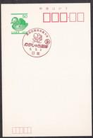 Japan Commemorative Postmark, 1994 National Sports Festival Water Polo (jci3776) - Otros