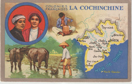 Dav : Carte Publicitaire  Du Lion Noir :  Colonies  Françaises , La Conchinchine , Mer De Chine , Saigon, Rach, Tay Minh - Advertising