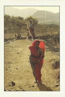 CPM, Inde ,Un Puits Dans La Lumière  Du Soir Près De Jodhpur ,dans Le Rhajastan ( Inde ) ,Phot.Raymond Fau - Inde
