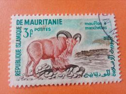 MAURITANIE - MAURITANIA - République Islamique De Mauritanie - Timbre 1960 : Mouflon à Manchettes - Mauritania (1960-...)