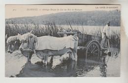 CPSM AGRICULTURE ATTELAGE - Attelage Basque Du Lac Du Bois De Boulogne (près De Dax) - Teams
