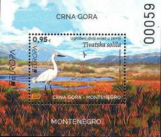 2021 Europe - Endangered Wildlife In The Country, Tivat Saltworks, Birds, Mini Sheet, Montenegro, MNH - Montenegro