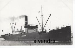 LILIAN 1924 - Cargos