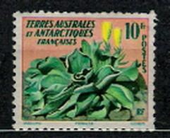 TAAF 1959 Mi 13 Kerguelen Cabbage (Pringlea Antiscorbutica) - MLH - Non Classés