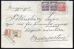 CSEMŐ 1917. Ajánlott Levél, Postaügynökségi Bélyegzéssel Budapestre - Used Stamps