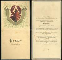 BUDAPEST 1884. Dekoratív, Litografált Menükártya / étlap - Unclassified