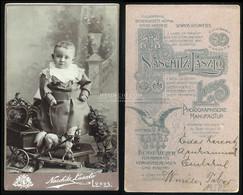 Lugos  1910. Ca. Naschitz : Régi Visit Fotó - Unclassified