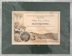 BUDAPEST 1944. Borászati és Pincegazdasági Kiállítás , Aranyárem Diploma Paszpartban! Szép Sés Ritka, Különleges Darab! - Unclassified