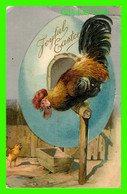 PÂQUES - JOYFUL EASTER - A CHICK AND A BIG COCK - EMBOSSED - TRAVEL IN 1909 - 3/4 BACK - - Easter