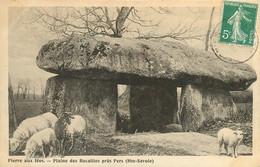 100521 - 74 PIERRE AUX FEES Plaine Des Rocailles Près PERS - Mouton Dolmen - Altri Comuni
