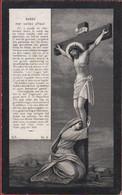 Hendrik Schoenaers Virginia Van Hove Helchteren Kortessem Overpelt Lithographie Bidprentje Doodsprentje Image Mortuaire - Devotion Images
