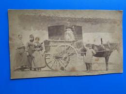 Cheval Tirant Ancien Carrosse-☛Cocher Montrant Dame Surélevée-& 3 Autres Femmes-Photographie- Photo Originale- Av 1900- - Old (before 1900)