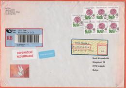 Repubblica Ceca - Czech Reublic - Ceska Republika - 2005 - 7 X 6,50 Jiřina + 4,50 Postage Paid - Registered - Medium Env - Covers & Documents