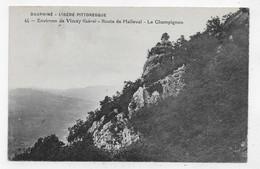 ENVIRONS DE VINAY - N° 44 - ROUTE DE MALLEVAL - LE CHAMPIGNON - CPA NON VOYAGEE - Vinay