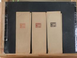 A13/725 3 BANDES DE JOURNAUX AVEC FILETS  XX - 1876-1898 Sage (Type II)