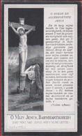 August Van Kerckhove Clementine De Geyter Zele Heikant 1917 Bidprentje Doodsprentje Image Mortuaire - Images Religieuses