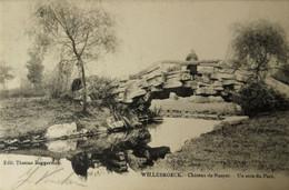 Willebroek - Willebroeck // Chateau De Naeyer - Un Coin Du Parc 1904 - Willebroek