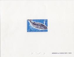 Epreuve De Luxe Du N° 22 (Grande Baleine Bleue) 5F, Format 130 X 100 - Covers & Documents